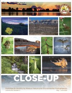 MONEP May-June 2021 Newsletter